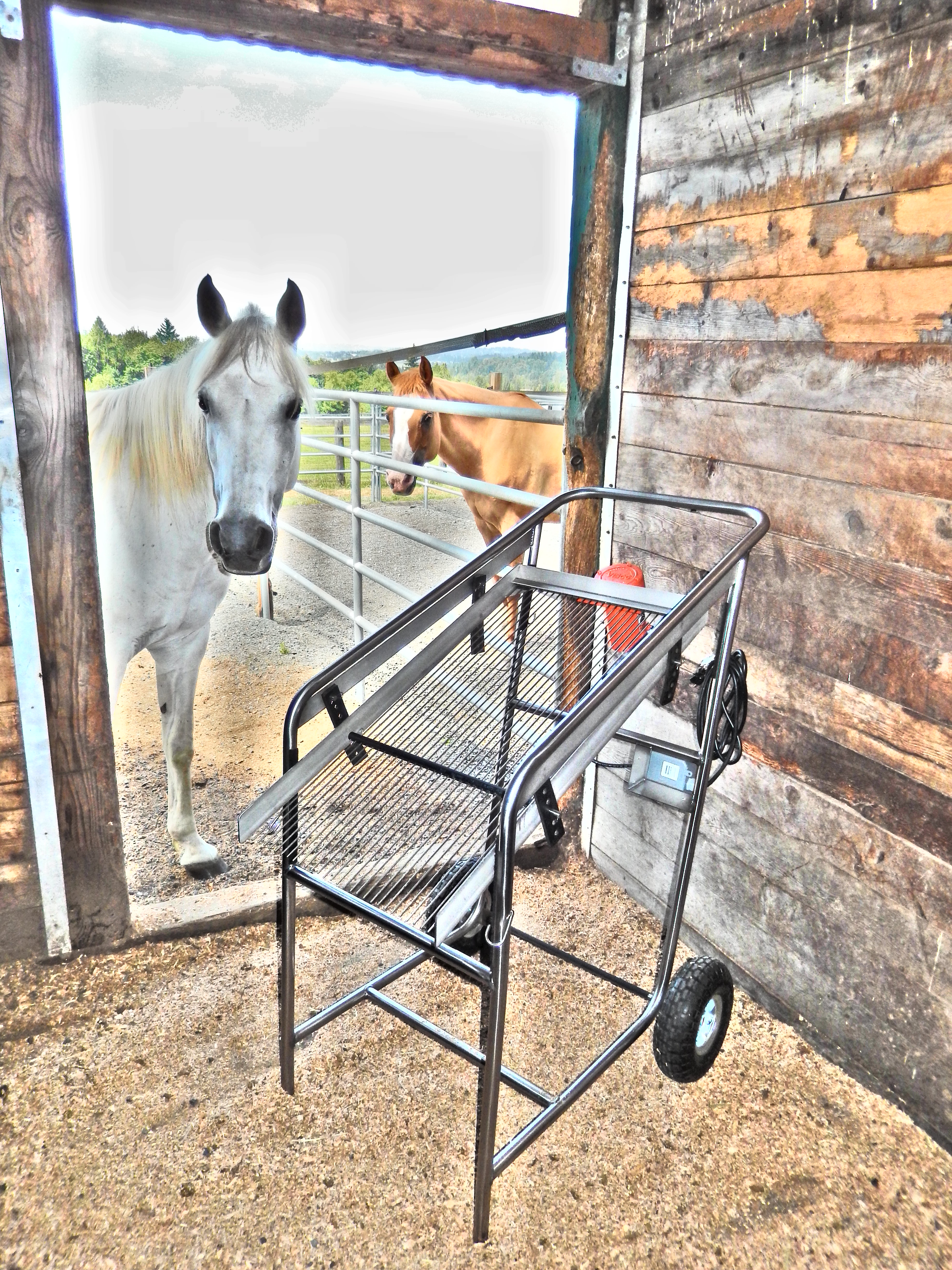 Horse stall cleaning machine, horse stall bedding sifter